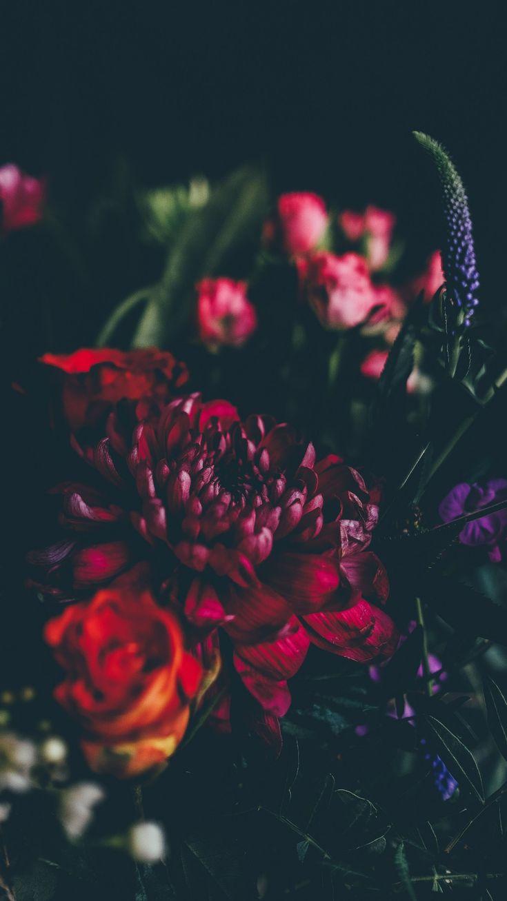 Dunkle Blumen | Pinterest: Natalia Escaño   – SUPER-ART