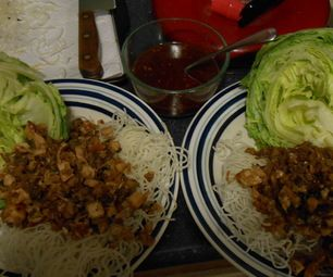 This is my favorite recipe for P.F. Changs.Lettuce Wraps