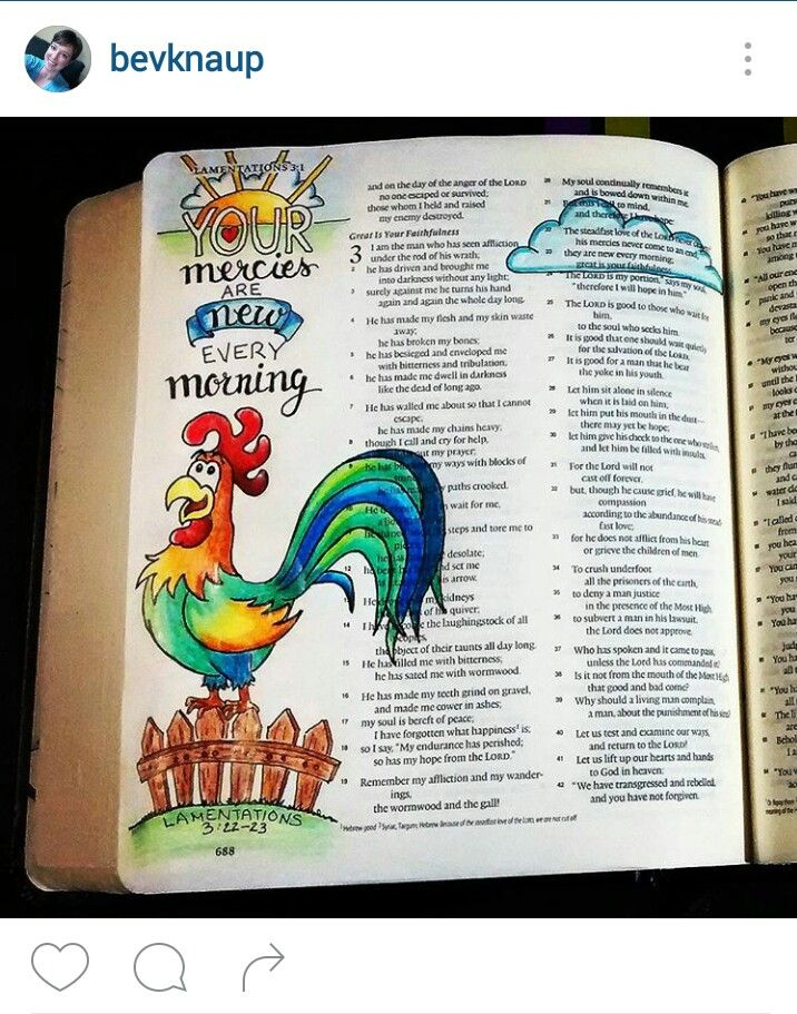 Bev Knaup bible journal Lamentations 3:22-23