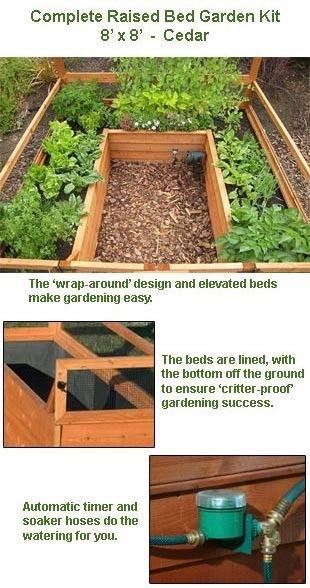 25+ Trending Cedar Raised Garden Beds Ideas On Pinterest | Raised Bed Kits, Raised  Garden Bed Kits And Raised Vegetable Garden Beds