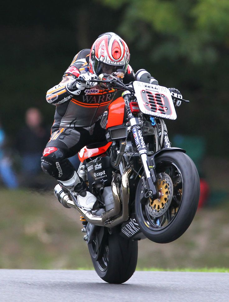 XR1200wheelie.jpg (800×1054)