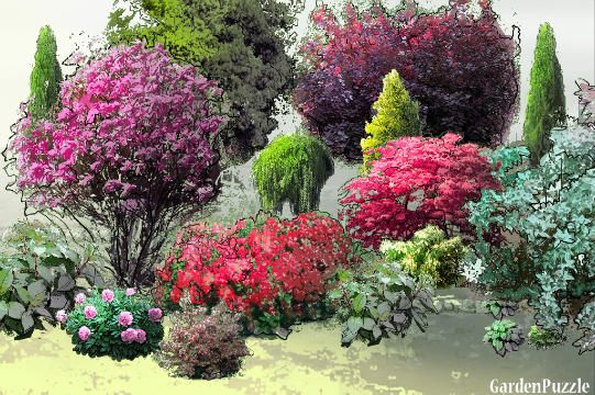Rabata w ogródku - GardenPuzzle - projektowanie ogrodów w przeglądarce