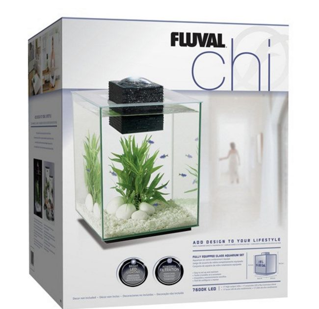 5 Gallon Aquarium Tank