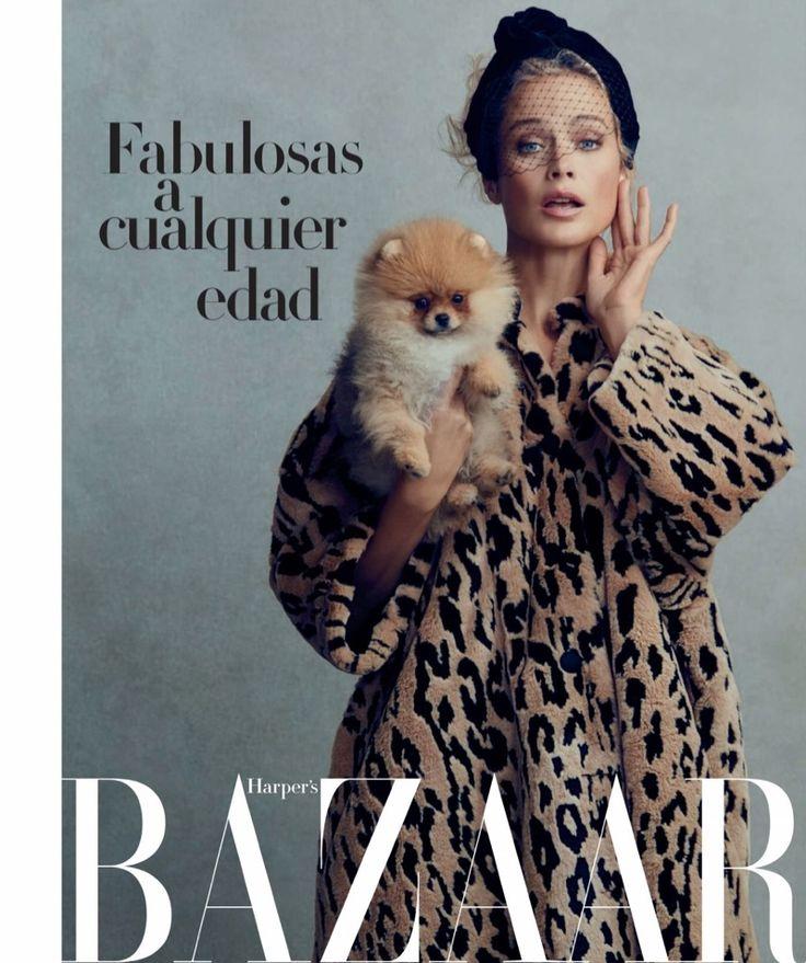Carolyn Murphy   Elegant Fashion Editorial   Harper's Bazaar Spain