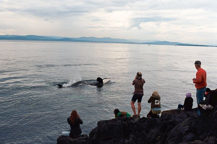 San Juan Islands Wa It S Not Only Seattle Residents Who Dream Of Escaping