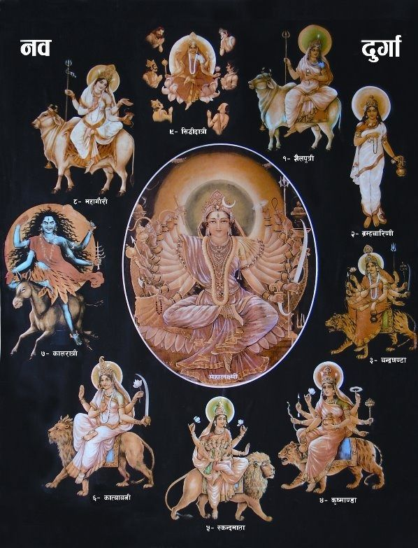 """hinducosmos: """" Nav Durga, The Nine forms of Goddess Durga The 9 names of Maa Durga are:  1. Maa Shailputri  2. Maa Brahmacharini  3. Maa Chandraghanta  4. Maa Kushmanda  5. Maa Katyayani  6. Maa..."""