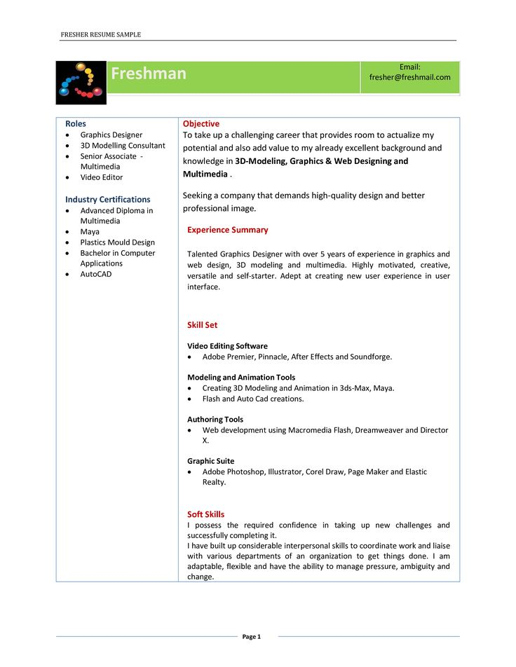 32++ Professional title for resume for fresher Resume Examples