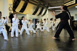 Premier Martial Arts   Ages 4-6