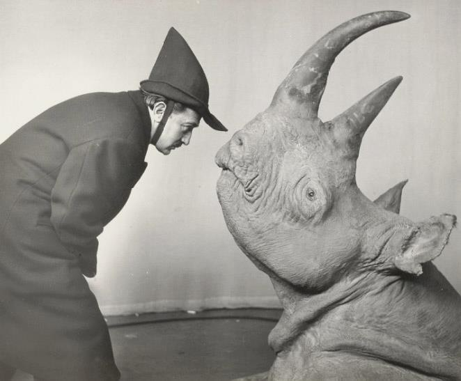 Salvador Dalí and a rhino- one of my favourite paintersMan Ray, Philippehalsman, Salvadordali, Philippe Halsman, Art, Salvador Dali, Rhino, Photography, Animal