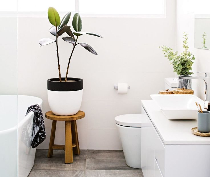 25 beste idee n over badkamer planten op pinterest thuis planten appartement planten en - Sfeer zen badkamer ...