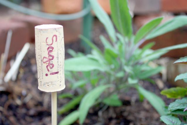 Plant Markers Made from Wine Corks