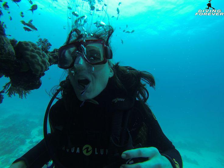 http://www.divingforever.com/tauchen-hurghada.html  Auf dieser Seite möchten wir Ihnen unser vielfältiges Programm, welches mit Tauchen Hurghada möglich ist, kurz Vorstellen. Hierbei werden verschiedene Arten von Tauchkursen, Schnuppertauchen, Schnuppertauchkurse, Spezialkurse sowie Schnorcheln beschrieben.