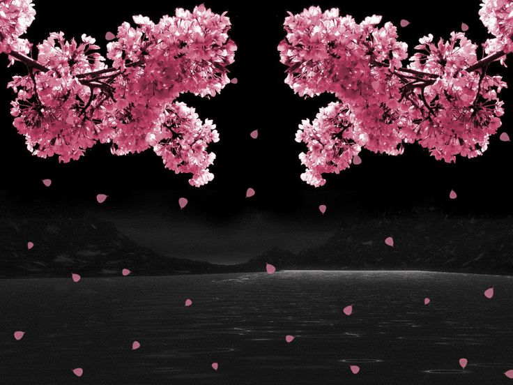 968 best Landscape in Motion images on Pinterest Beautiful gif - cherry blossom animated