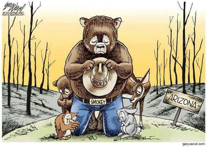 175 Best Smokey The Bear Images On Pinterest Fire