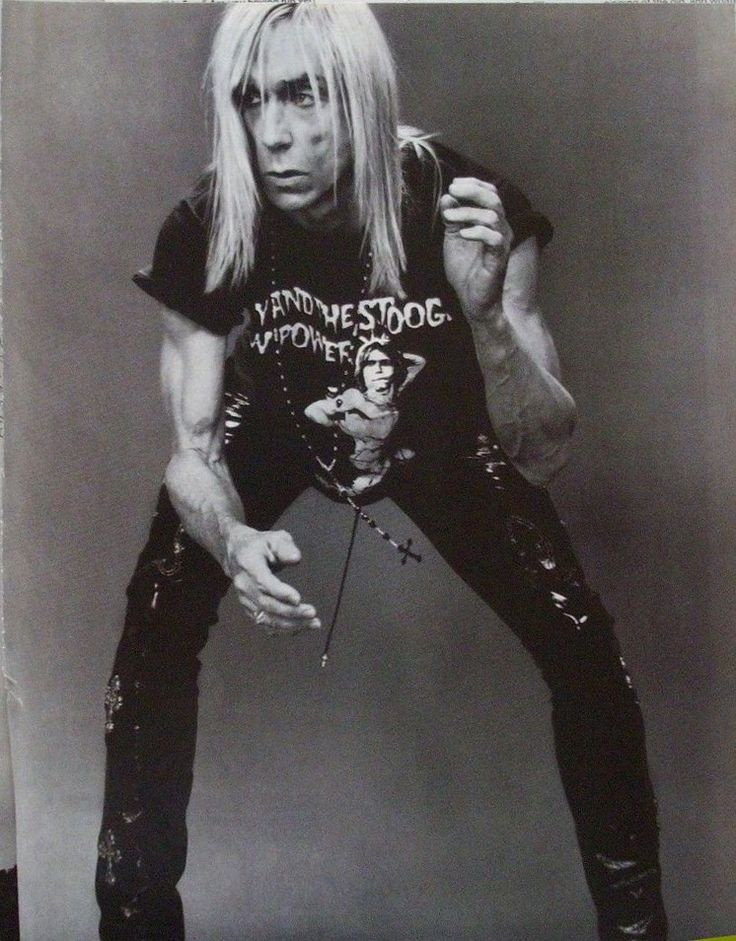 691 best iggy popthe stooges images on Pinterest  Iggy