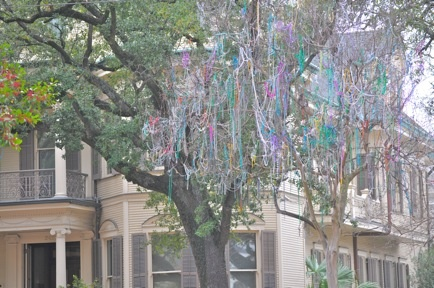 ohhh mardi gras.: New Orleans, Mardi Gras And, Round Beads, Mardi Gras Beads, Beads Trees, Gras Trees, Thanksohhh Mardi, Photos I Lik, Christmas Trees