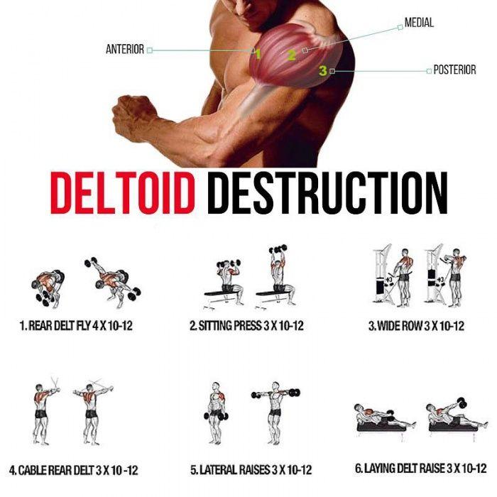 Deltoid Destruction! Shoulders Training Plan - Yeah We Train !