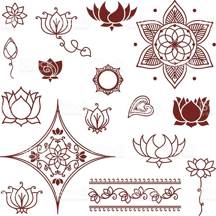 A collection of lotus flowers and lotus buds inspired by