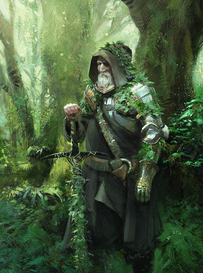 Radagast the green - Pathfinder PFRPG DND D&D d20 fantasy