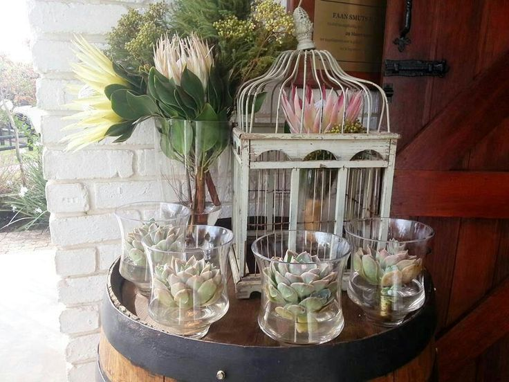 Protea, succulents and antique birdcage wedding decor theme . My wedding decor on a wine barrel