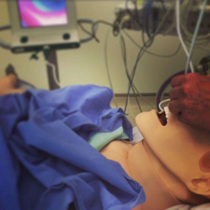 Flexible awake intubation simulation