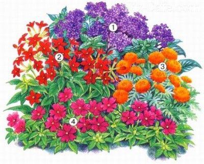 Смешанная клумба из ярких цветов