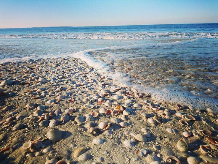 Colorado River Porn - Mexico Beach, FL. Mexico Beach FlPornBeaches