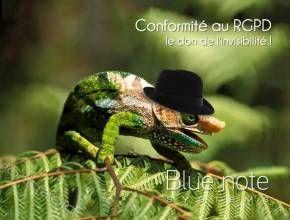 Soyez conforme au RGPD avec un #CRM performant ! #bluenotecrm #biosphoto