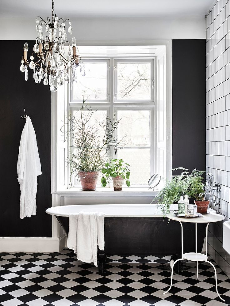 Photo Of black and white bathroom bright light plants very cute bathroom