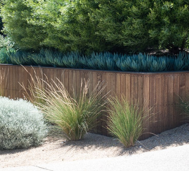 James Ross Landscape Design www.jamesrosslandscape.com.au