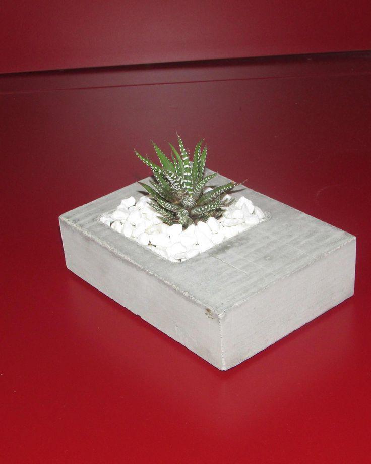 cactus si beton