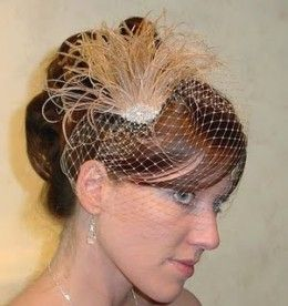 Champagne Bird Cage Veil: Peacock Feathers, Wedding Veils, Style, Wedding Ideas, Birdcage Veils, Wedding Stuff, Weddings, Alternative Ideas, Birdcages