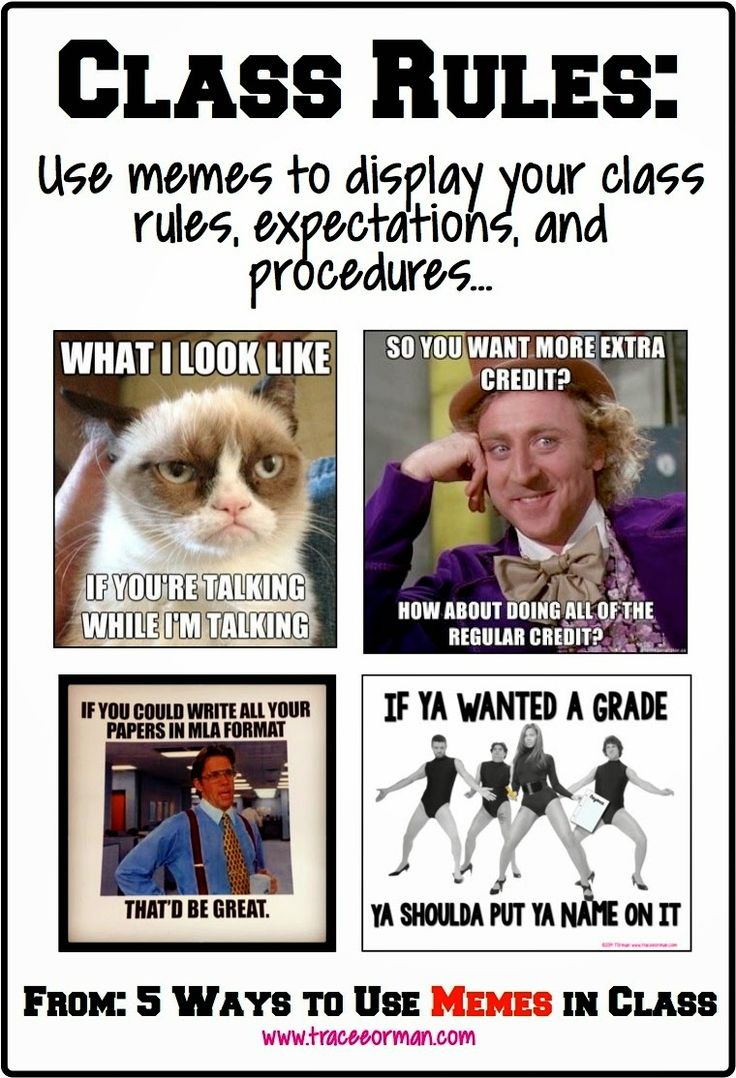 Use memes for your class rules and expectations  {from www.traceeorman.com}