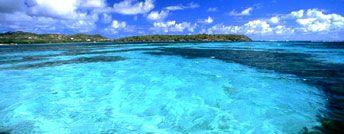 #Martinique. Fabulous crystalline turquoise Martinique's sea.