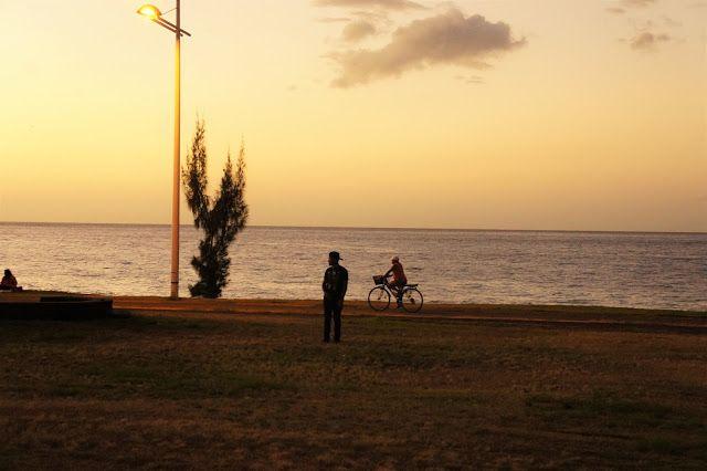 Une Lorraine à l'Île de la Réunion: LE PORT : Bord de mer et parc boisé (parcours bota...