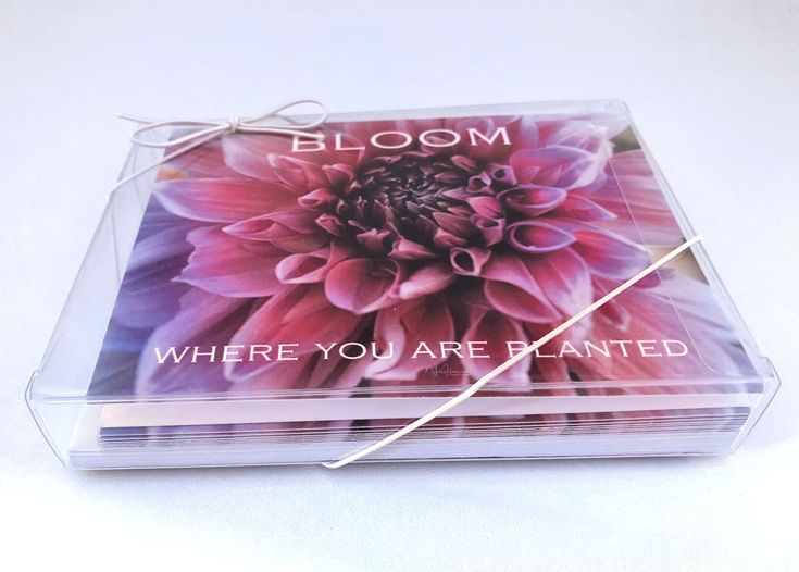 #NoteCards- Bloom Where You Are Planted #graduationcards #mothersdaycards #giftsforher #thankyoucards #sympathycards #motivational #inspirational #mom #formom #girlfriendgifts #giftformom #giftforwife #sistergift #https://www.etsy.com/listing/604445031/floral-all-occasion-folded-blank-note?ref=shop_home_feat_1