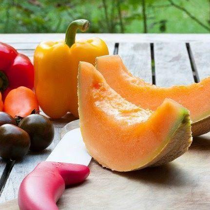 La saveur des vacances #melon #cavaillon #produits #soleil #sun #table #repas #vitamines #healthyfood #provence #luberon #sudfrance #vacansoleil #camping #vacances #holidays #campingtime #campingfun #campinglife #instacamping #camping2017 🍉🍇🍋