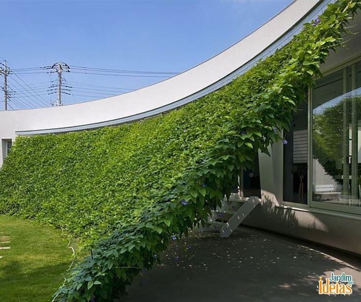 """Já imaginou ter uma """"cortina verde"""" na sua casa? É bem fácil de fazer! Vem saber mais sobre essa tendência de paisagismo no blog: ow.ly/4nfzbK"""