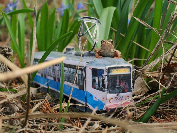 Nature_2May2015 - Dropbox