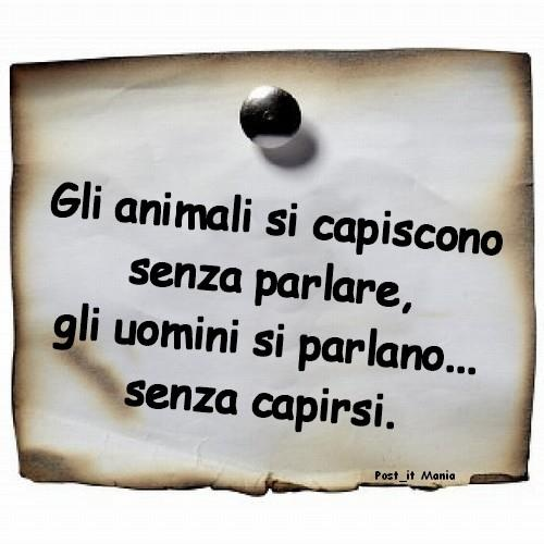 animali e uomini...