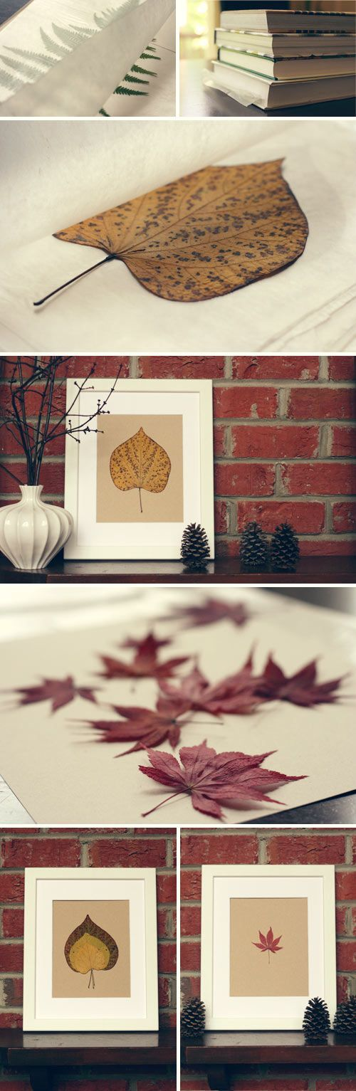 Pressed Leaves...  They look great framed.  You could attempt laminating them and making bookmarks.