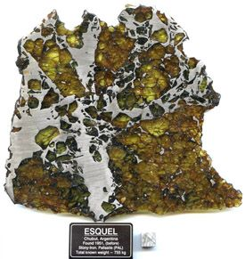 """""""The Esquel meteorite, consisting of iron-nickel and olivine, was discovered in central Argentina."""""""