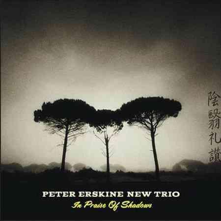 Peter Erskine - In Praise of Shadows
