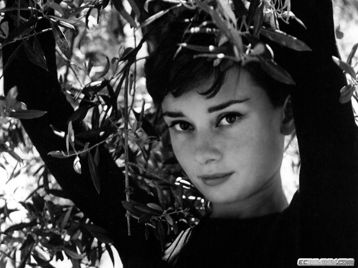 audrey hepburn biography essay Audrey hepburn, one of the most exquisite and elegant women of the 20th century, was an academy-award winning actress as well as a fashion icon.