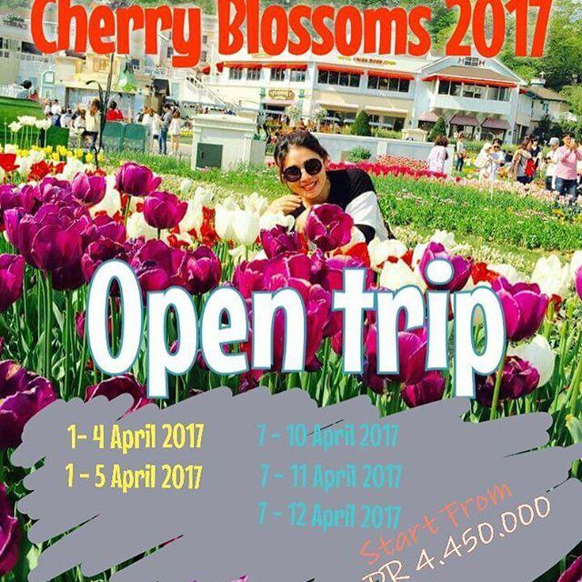 【koreatrip_indah】さんのInstagramをピンしています。 《Avaliable date  Schedule Regular Open Trip 2017 SEOUL - NAMI - Everland - Lotte World - Mt. Seorak ( Jeju, Busan, jinhae by request)  APRIL 2017 CHERRY BLOSSOMS 2017 Land Tour start from IDR 4.450 1. Reg 1 👉🏼 1 - 4 April 2017 2. Reg 2 👉🏼 1 - 5 April 2017 3. Reg 3 👉🏼 7 - 10 April 2017 4. Reg 4 👉🏼 7 - 11 April 2017 5. Reg 5 👉🏼 7 - 12 April 2017  HALAL TRIP Land Tour start from IDR 6.000 6. Reg 6 👉🏼 19 - 25 April 2017  MEI 2017 Land Tour…