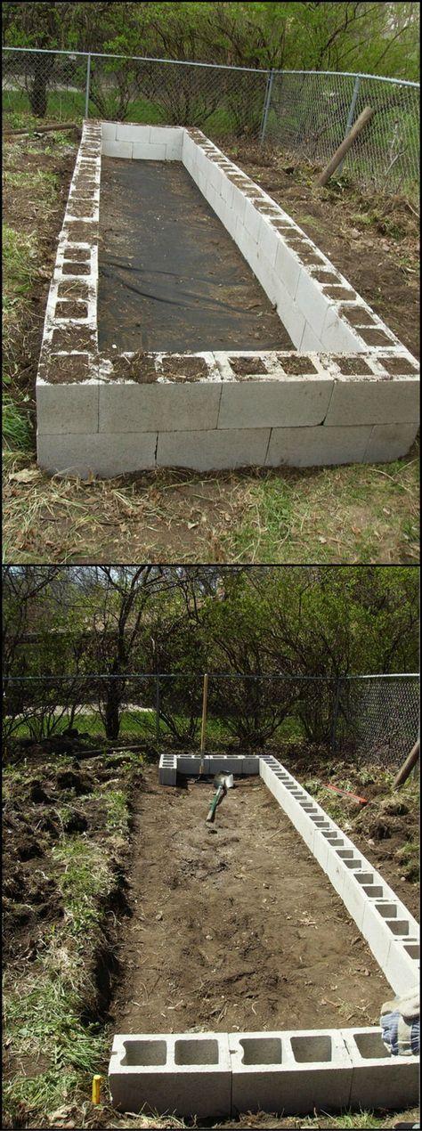 Best 25+ Raised Garden Beds Cinder Blocks Ideas On