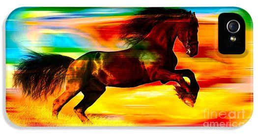 Black Horse iPhone5 Case