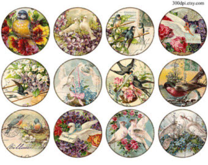 postal de aves carte postale exploración del Vintage para imprimir etiquetas Digital Collage hoja 2.5 pulgadas círculo imágenes ronda descargar e imprimir