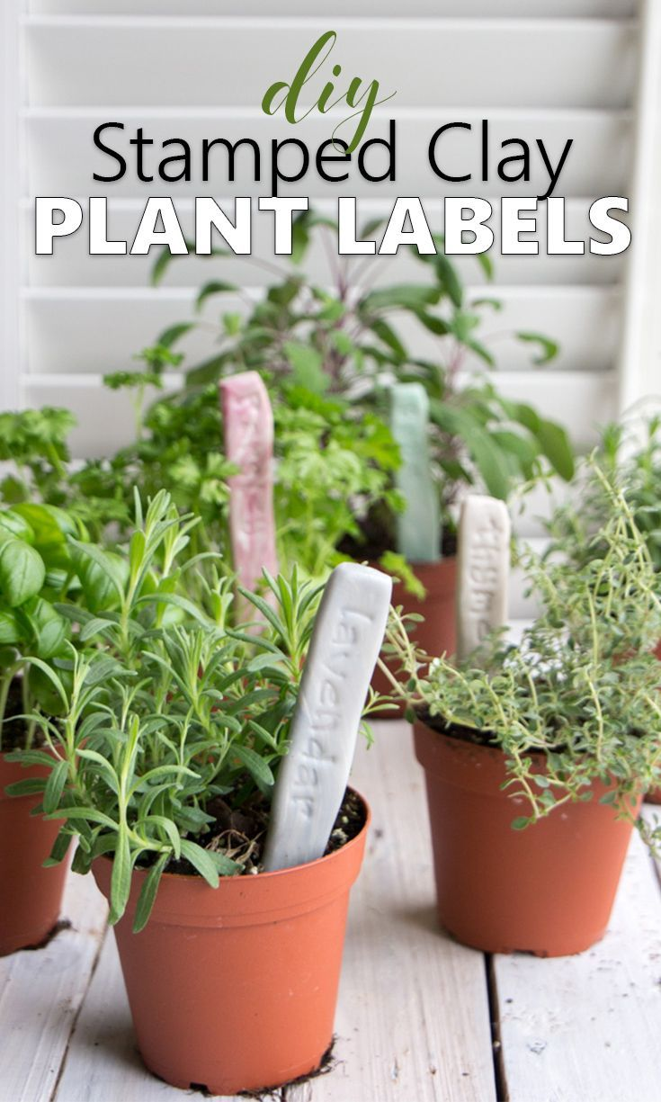 Diy Herb Garden Markers With Air Dry Easy Sculpt Clay Outdoor