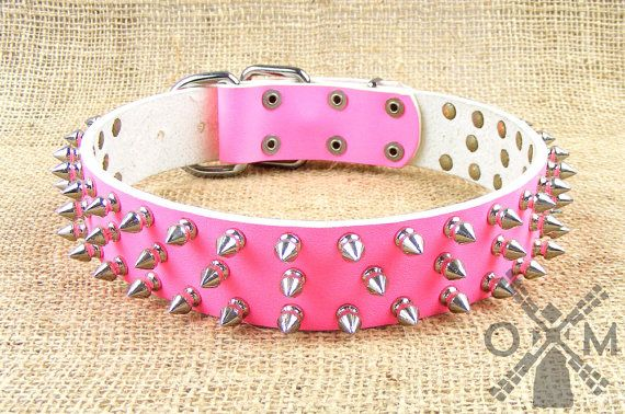 This collar is 1 ½ inch wide and has a size range from 18 to 36 inches of your canine's neck sizes. You will not need to buy a new collar if your dog's dimensions change. This outfit is 5 ways adjustable that lets you change its initial size without problems.